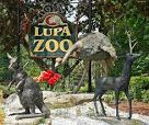 southwick zoo - Google Search
