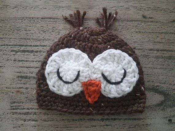 Newborn Owl Hat Crochet Hat First Hat Hospital Hat