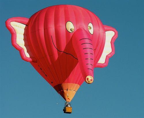 Elephant above, posted via 500px.com