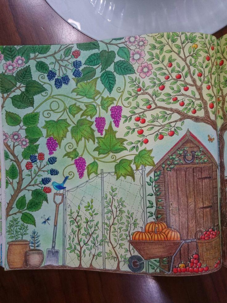 Johanna Basford Secret Garden Esrarengiz bahçe boyama kitabı klube kabak üzüm prismacolor Faber Castell kuru pastel first page