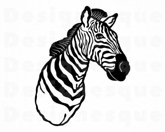 37+ Zebra head clipart black and white ideas