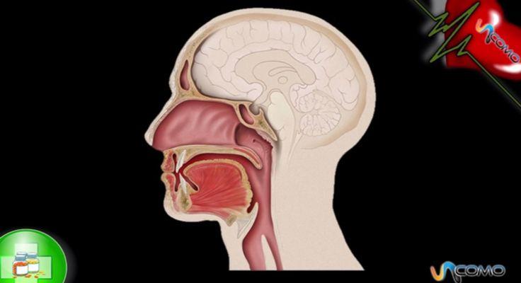 Cuáles son los primeros signos cáncer de garganta. Si quieres saber cuáles son los primeros síntomas del cáncer de garganta no te pierdas las explicaciones que te ofrecemos en el siguiente vídeo. Sin duda diagnosticar un cáncer a tiempo es crucial par...