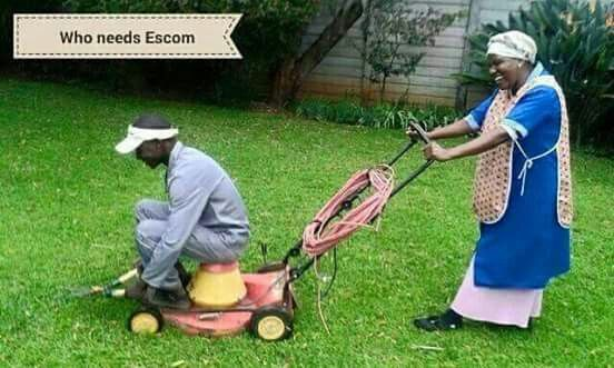 Who needs Ekom to cut the lawn