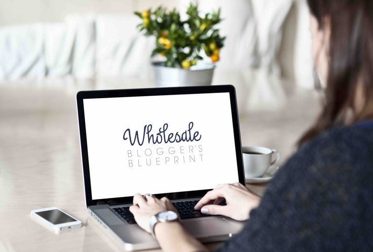 Are you an aspiring wholesale blogger, looking for a game-changing strategy for your new endeavour? This is for you!   Delivered daily to your inbox over 14 days, Wholesale Blogger's Blueprint is a game-changing strategy, designed to have you blogging for your wholesale business within two weeks. #wholesale #wholesaler #wholesalebusiness
