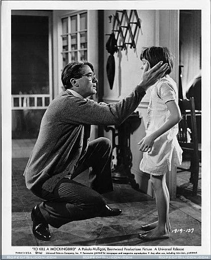 to kill a mockingbird and louise Jean louise finch, six years old at the beginning of to kill a mockingbird, is an  irresistible two-pronged character: she's both a good-natured.