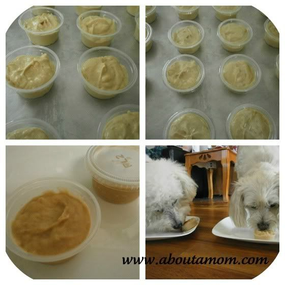 Make your own Doggy Ice Cream. It costs pennies to make compared to the store bought ice cream treats for dogs!