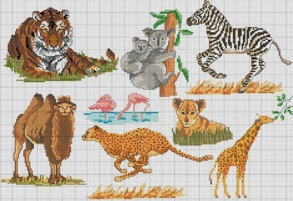 Schema punto croce Koala Zebra