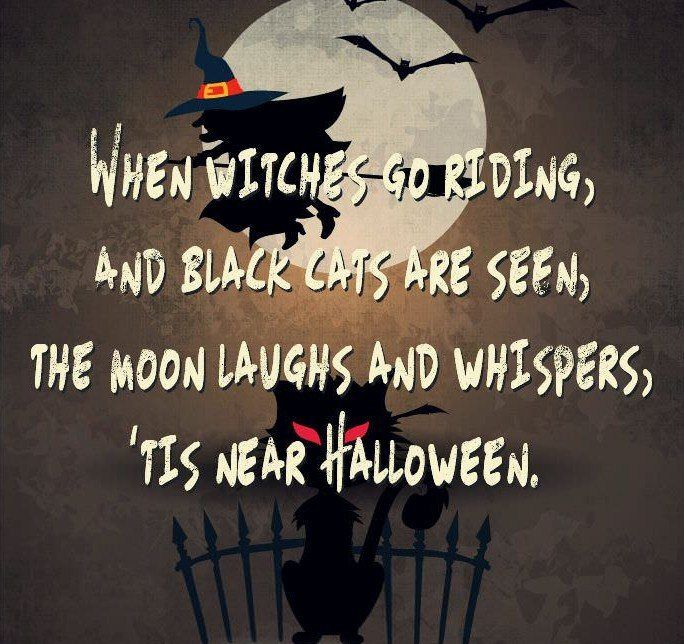 Great Funny Halloween Quotes Sayings And Wishes 2016 With Cute Images. Hilarious  Puns And Funny Messages For Adults, Kids And Girls To Send On Happy  Halloween Day Great Ideas