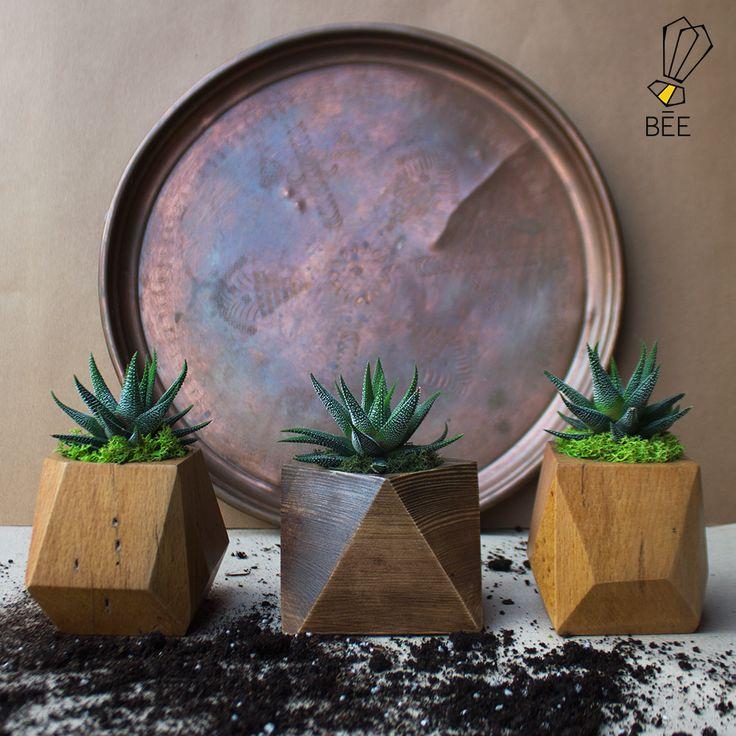 Doğanın asimetrik yansımaları yeni serimizde... Sipariş için: zeynep@beedesignandflowershop.com adresinden iletişime geçebilirsiniz. #beedesignandflowershop#art#design#decoration#jar#interiordesign#indoorgardening#nature#treebowl#plant#asparagus#justice#green#sculpture#flower#concept#handmade#succulent#çiçek#tasarım#bitki#yeşil#aranjman#arrangement#ahşap#wood#woodplanter#wooddesign#saksı#çiçektasarımı