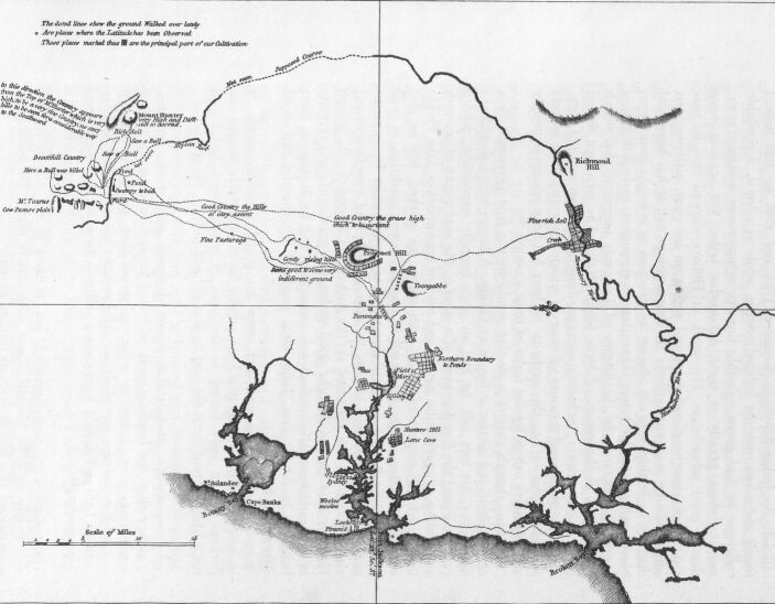 Chart of the three harbours of Botany Bay, Port Jackson, and Broken Bay, showing the cultivated grounds in and about the different settlements, with the course of the Rivers Hawkesbury and Nepean, and the situation of the wild cattle to the westward of the last-mentioned river.