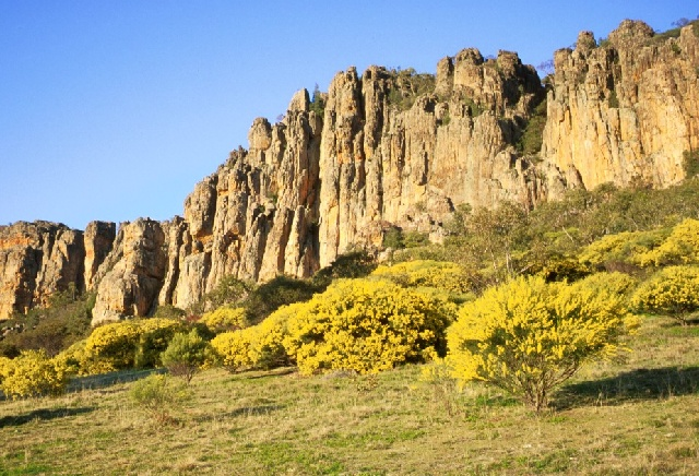 Arapiles, Victoria, Australia. I love and miss this place - the place of my adolescence years.