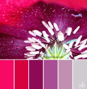 These colors, except gray, as lip colors are the bomb.