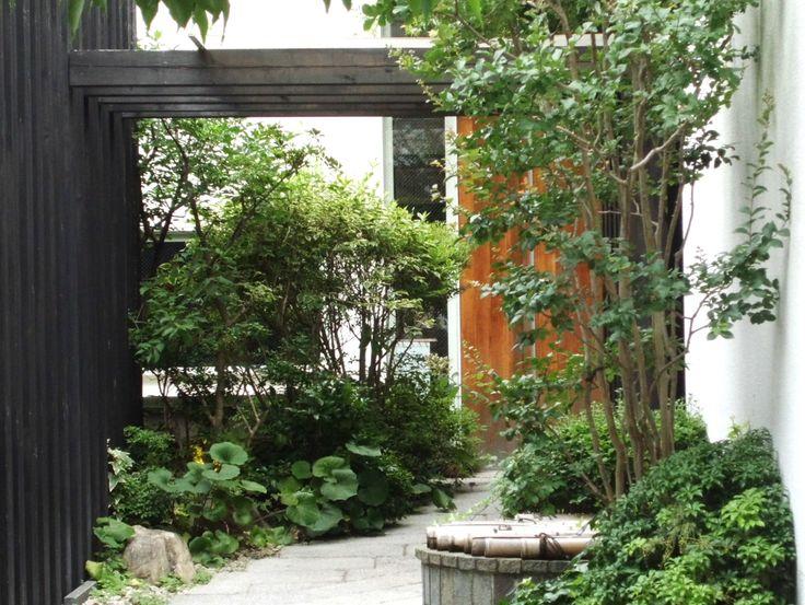 イメージ1 - 御幸町のランチ「ゆず家」の画像 - 京都・丹波のトレーラーハウスから スポーツ&旅 - Yahoo!ブログ