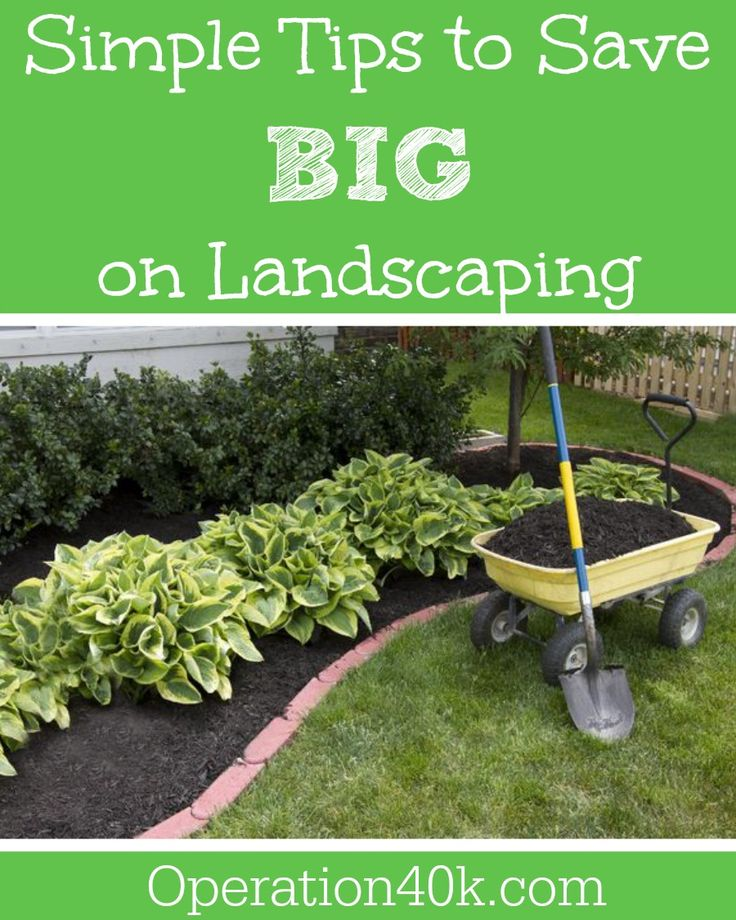 Save Big On Landscaping Image