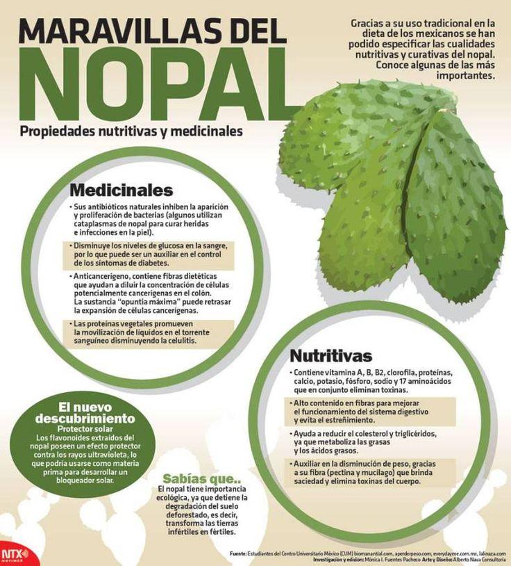 20150901 Infografia Maravillas Del Nopal @Candidman