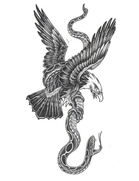 eagle snake - Szukaj w Google                                                                                                                                                                                 Mehr