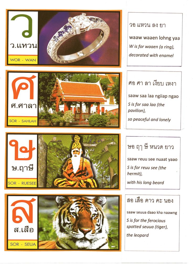 35 best Learning Thai images on Pinterest Thai alphabet - thai alphabet chart