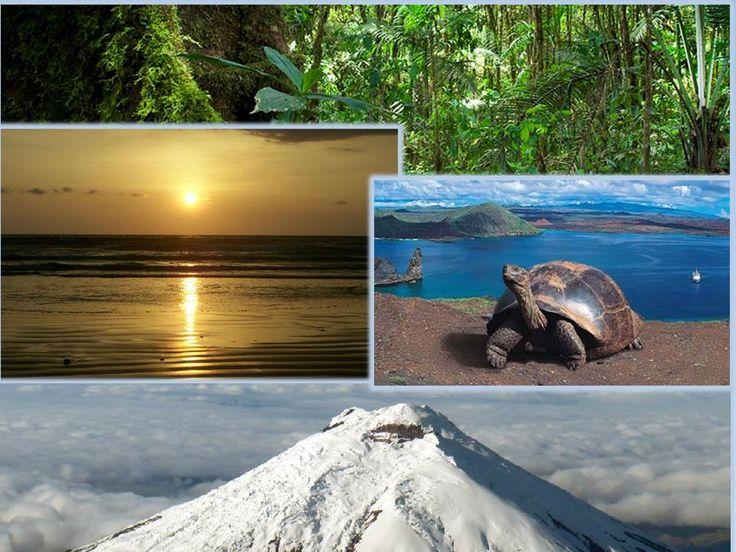 ECUADOR, AMA LA VIDA: Bajo ésta frase se enmarca la mega diversidad y cuidado por la naturaleza.