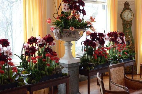 Är du i Stockholm i helgen? Då ska du absolut till Waldemarsudde  och se en helt fantastisk blomsterutställning: Jul i våra hus. Prins Eugen...