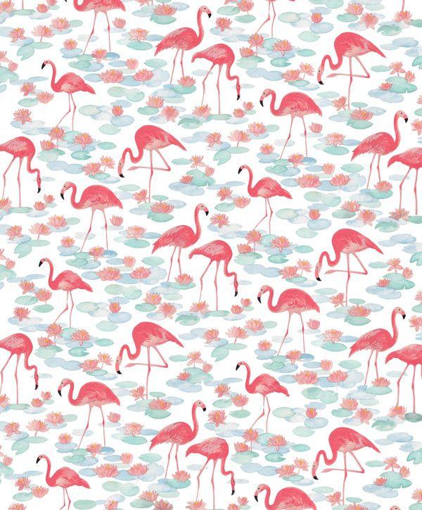 Vintage Flamingos / http://natalieryan.prosite.com/