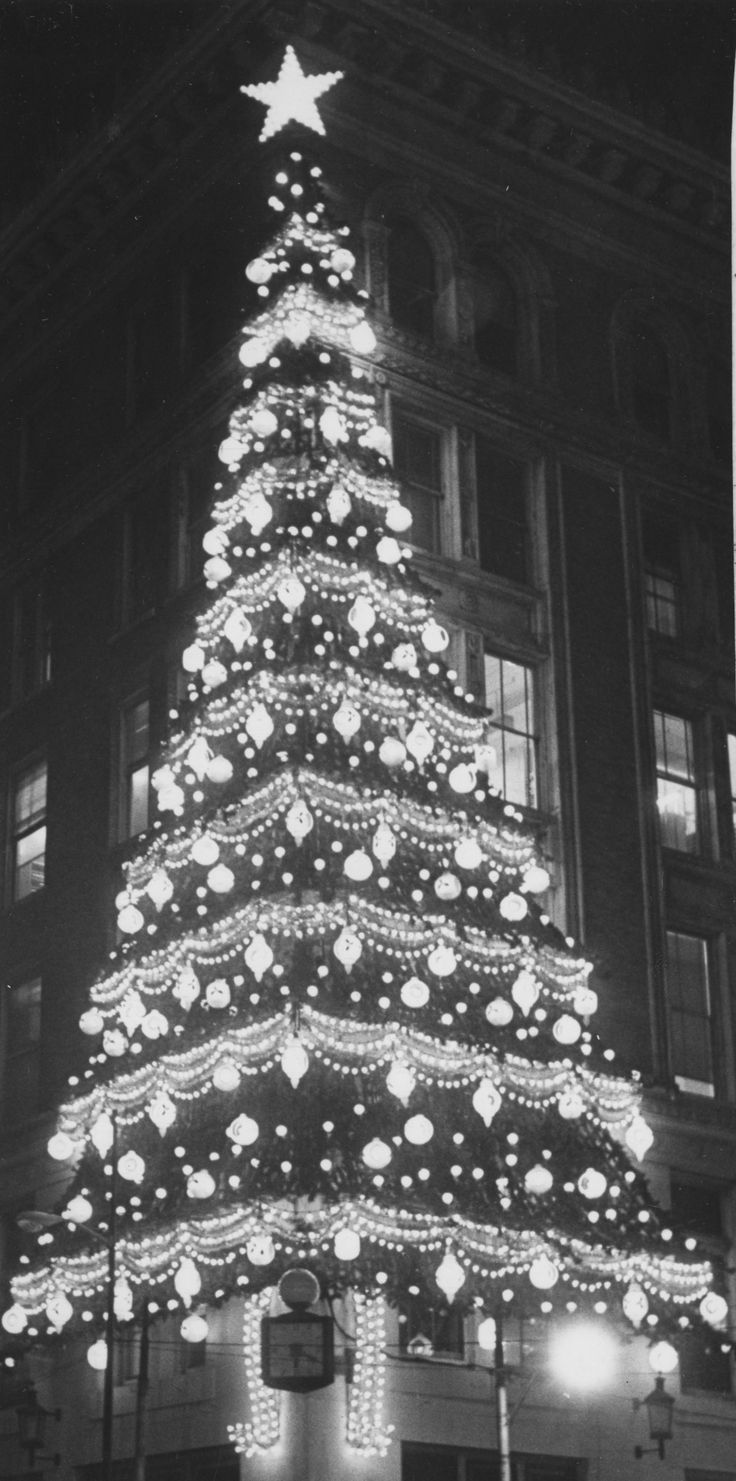 Christmas Trees By Robert Frost Part - 28: In November 1980, A Workman Labors Among The Bows And Ornaments Of The Christmas  Tree