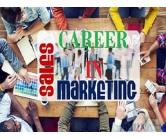 Sales & Marketing Manager Required for Amad Contracting Company in Dubai