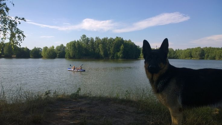Kayaking on lakes with Czech Adventures