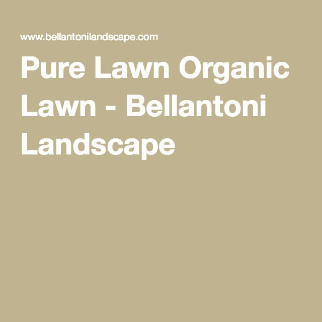 WHITE PLAINS Pure Lawn Organic Lawn - Bellantoni Landscape