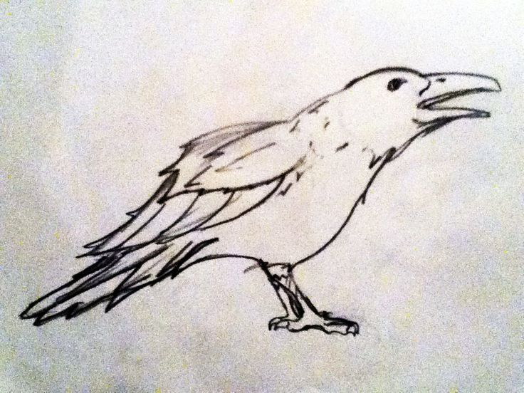 crow outline tattoo Crow Outline milk cans Pinterest
