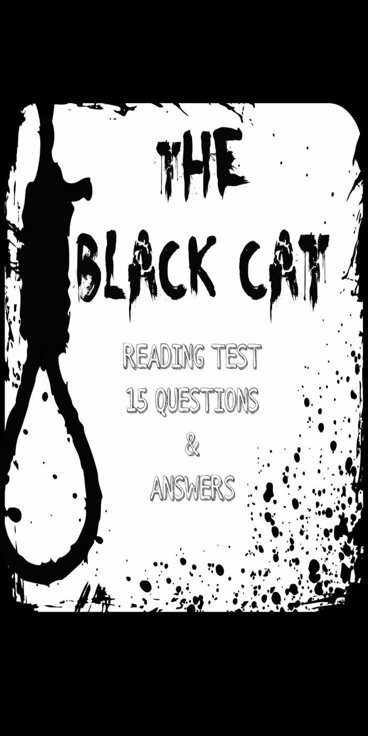essay questions the black cat The man i married was tender at heart and was particularly fond of animals when he was a child, he was pampered with many different pets, and was at his happiest when feeding and taking care of them.