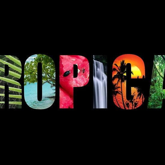 Tropical typography letters by Tracey Lee Art Designs. Available on clothing and merchandise