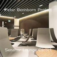Senator Lounge Escort (ft. Magnus Jansson, Mirko Borach & Michael Orzek) by Peter Bennborn Project on SoundCloud