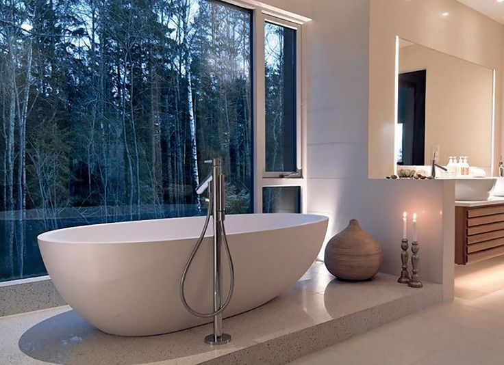 modern bathroom with a forest view (be voyeur to furry creatures)