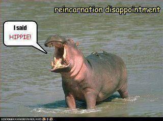Reincarnation Misunderstandings