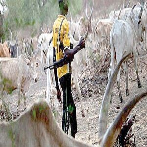 Banning nomadic cattle rearing, violation of 1999 constitution – Fulani chiefs - http://www.naijacenter.com/news/banning-nomadic-cattle-rearing-violation-of-1999-constitution-fulani-chiefs/