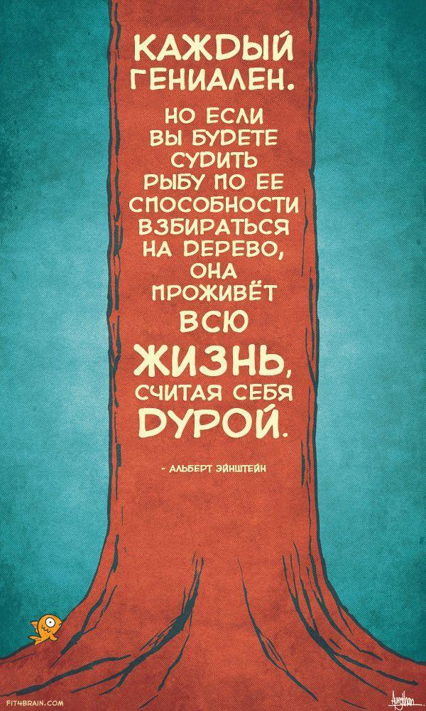 Лучшие цитаты светоча науки Альберта Эйнштейна – Фитнес для мозга - http://fit4brain.com/585