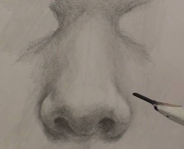 Free Drawing Class - How to Draw Noses — Online Art Lessons