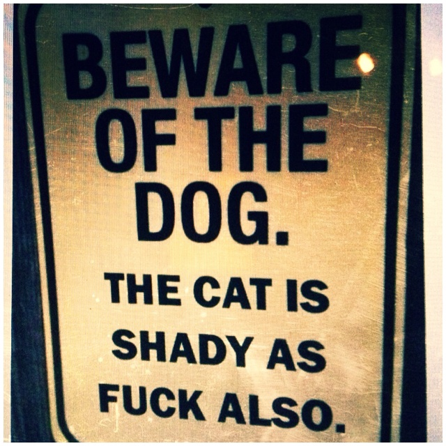 haha gotta get this.Beware Of Dogs, Dogs Cat, Pets, Warning Signs, Funny Stuff, So True, House, True Stories, Animal