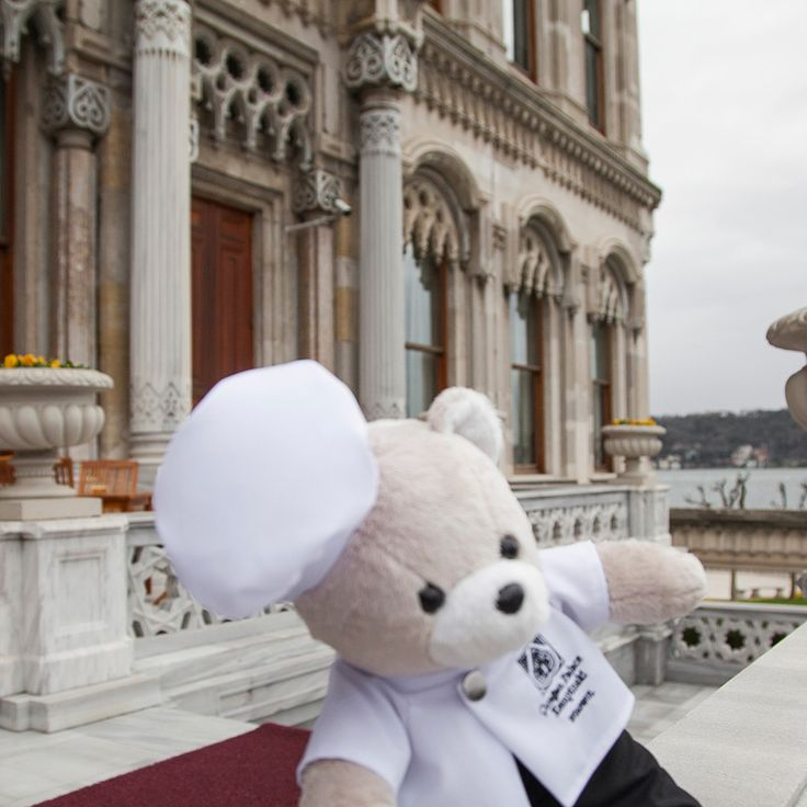 Chef Teddy can't leave without taking a selfie! Especially one with the Çırağan Palace and Bosphorus in the background! #ChefTeddy