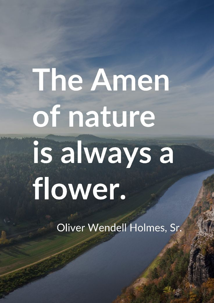 """The Amen of nature is always a flower."" by Oliver Wendell Holmes, Sr. printed on high quality matte paper available in different sizes"