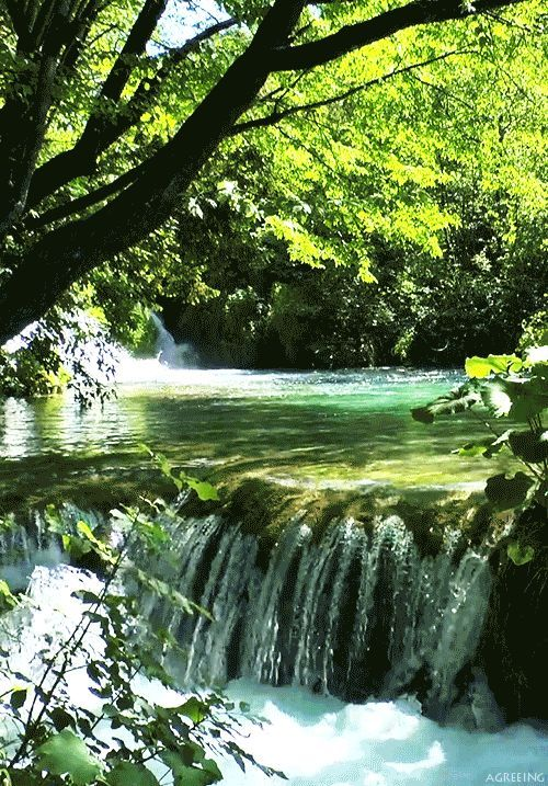 Daily Rant — Plitvice Lakes By me