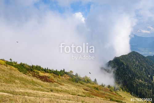 "Download the royalty-free photo ""Mountain peaks in clouds ,view from Mont Hochfelln, Bavarian Alps, Germany"" created by stillforstyle at the lowest price on Fotolia.com. Browse our cheap image bank online to find the perfect stock photo for your marketing projects!"