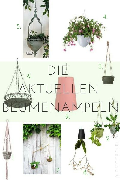 Die schönsten Blumenampeln für Balkon, Garten & Innenräume #blumenampel #hängetopf #balkon #hängeampel #garten