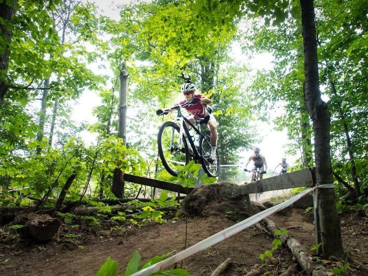 Yes, this is Hardwood Mountain Biking at it's best. #getyourbikeon