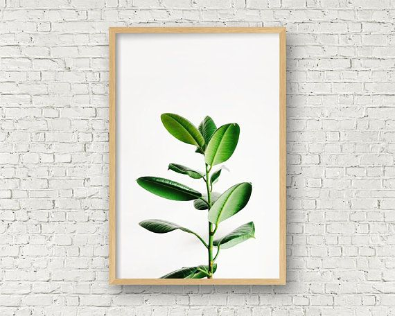 BL/_ Modern Watercolor Plant Canvas Painting Palm Leaf Art Print Wall Poster Surp