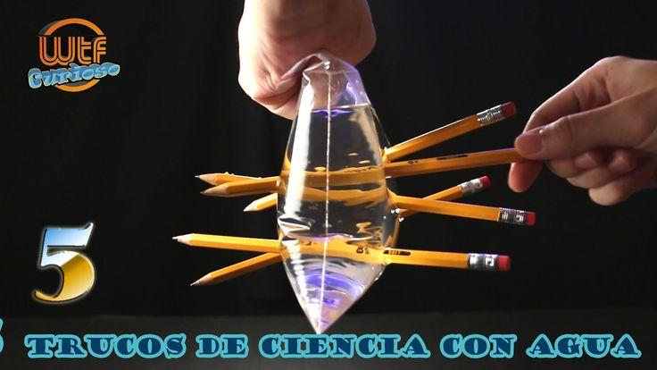 Experimentos caseros top 5 ciencia facil con agua c mo for Imagenes de estanques caseros