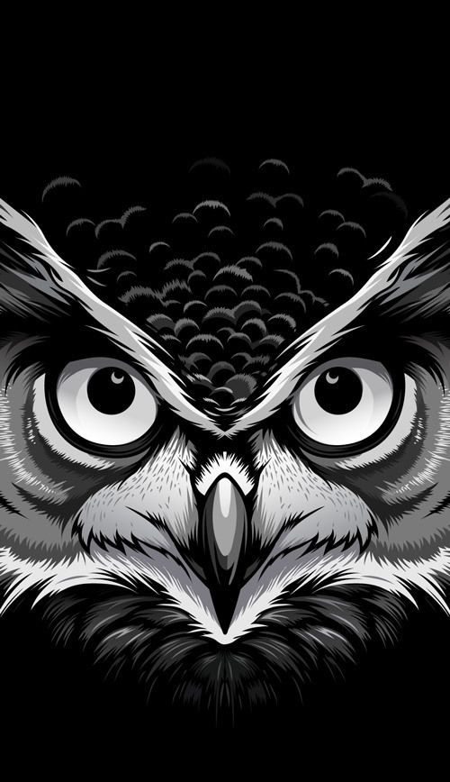 Wild Stares by Bernard Salunga