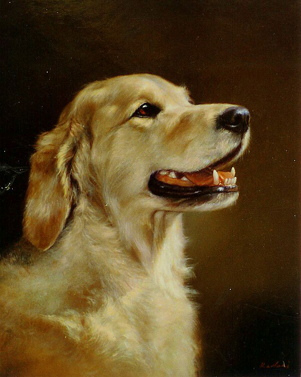 Athos- my painting friend's dog