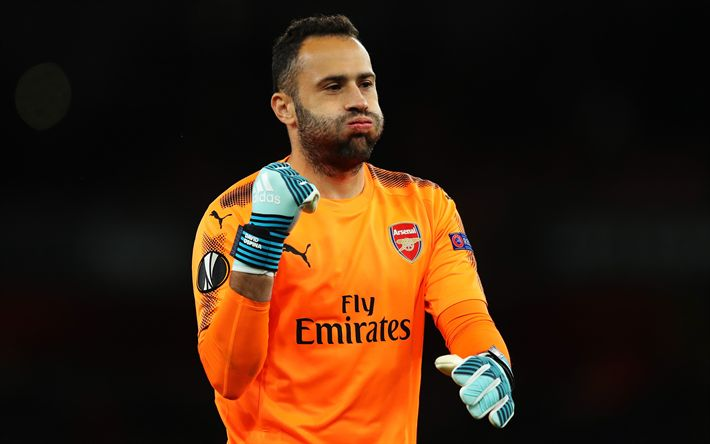 Download wallpapers 4k, David Ospina, Arsenal, goalkeeper, footballers, The Gunners, soccer, Premier League, FC Arsenal