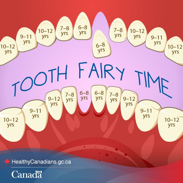 Know when to expect the tooth fairy: http://www.hc-sc.gc.ca/hl-vs/oral-bucco/care-soin/child-enfant-eng.php?utm_source=Pinterest_HCdns&utm_medium=social&utm_content=Dec15_Teeth_ENG&utm_campaign=social_media_13